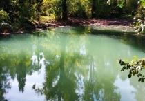 Сообщается, в одном из водоемов вода приобрела бирюзовый оттенок