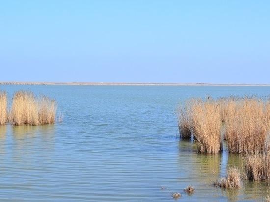В калмыцком районе обмелели пять крупных водоемов