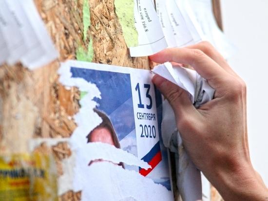 Молодые парламентарии очистили псковские дворы от предвыборной агитации