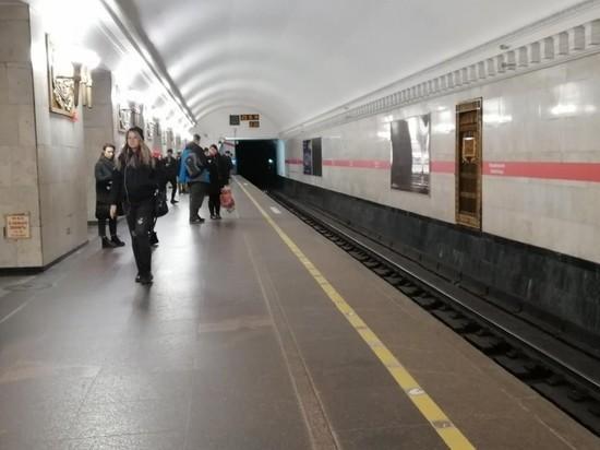 На станции «Владимирская» пассажирка выжила после падения на рельсы