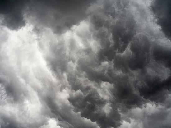 О сильном ветре в четверг предупреждает псковичей МЧС