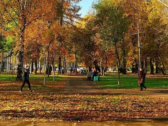 Кировчане расскажут, каким они хотят видеть Гагаринский парк