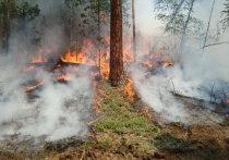 Два лесных пожара действуют в Приангарье