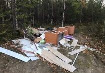 Леса Ноябрьска завалили мусором
