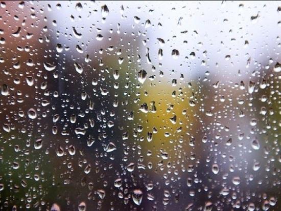 Тверские синоптики рассказали о погоде на выходные