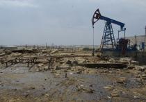 После иска прокуратуры Ставропольского края районный суд приостановил деятельность ООО «Нефть-Сервис», которое ведет добычу нефти на Заманкульском месторождении на территории Северной Осетии