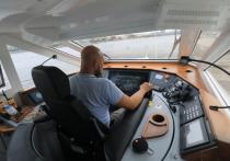 К концу навигации 2020 года петербургские судовладельцы смогут перевезти около миллиона человек