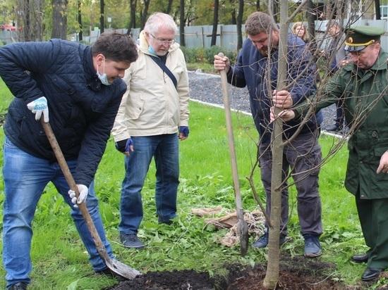 Представители городской власти, общественники и журналисты высадили деревья в сквере Орджоникидзе