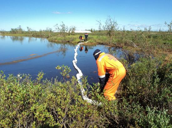 Депутат: уникальное озеро стало мертвым после аварии на норильской ТЭЦ