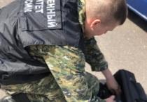 Екатеринбургского газонокосильщика будут судить за сожжение начальника заживо