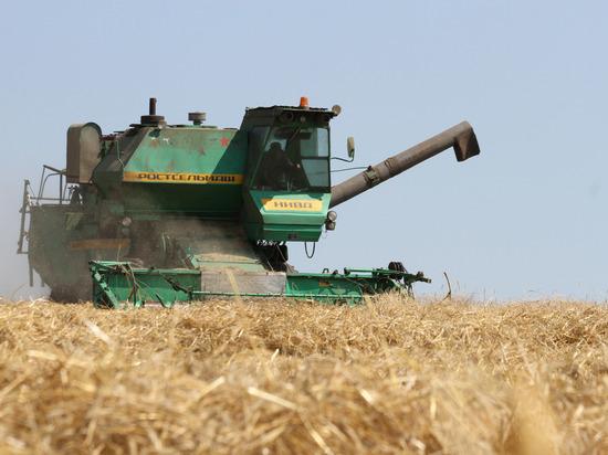 Десять районов Башкирии собрали более 100 тысяч тонн зерна
