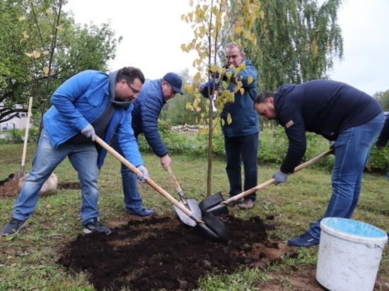 Владимир Шарыпов: каждую субботу в Иванове будут сажать деревья