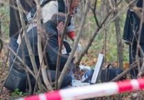 На Лукинском кладбище в Серпухове обнаружено тело погибшего трёхдневного младенца.