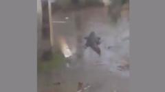 "Ураган ""Салли"" принес во двор американки гигантского аллигатора: видео"
