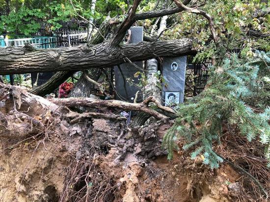 Разбитые памятники, поднятые могилы, огромные стволы деревьев, вывернутые с корнем и обрушившиеся на гранитные плиты — таким предстало в это выходные Петровское (Лыткаринское) кладбище  для посетителей
