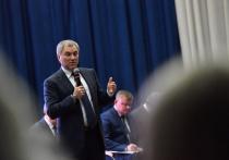 Володин рассказал о планах благоустроить Детский парк