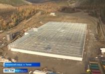 На Колыме появится самый современный в ДФО тепличный комплекс