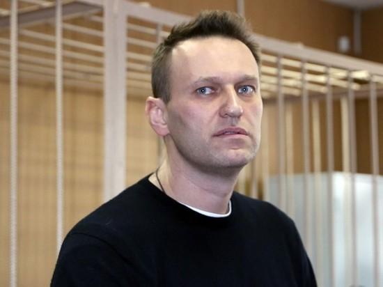 МВД: по делу Навального опросили 200 человек
