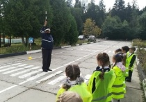 В городском округе Серпухов с 21 по 25 сентября проводится традиционная неделя безопасности дорожного движения.