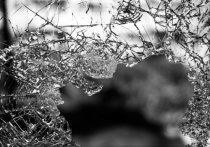 Несколько десятков колотых ран получила трехлетняя девочка в бассейне в Люберцах