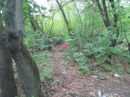 В рязанской лесопосадке неизвестный мужчина покончил с собой