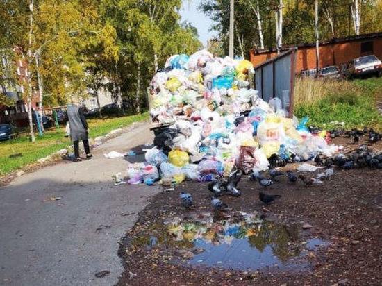 В Осинниках жители жалуются на горы мусора