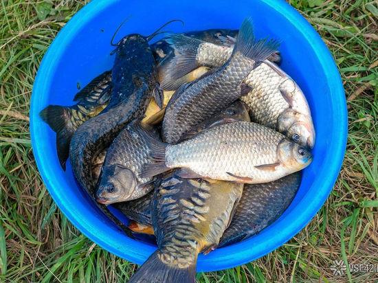 Кузбасские рыбаки соревновались на фестивале рыболовного спорта