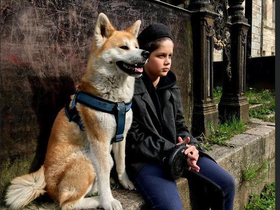 Некоммерческий фильм для подростков в жанре мистический детектив о приключениях городского пацана и его японской собаки в заброшенной русской деревне, вокруг которой полыхают поля, сейчас готов на 90 процентов