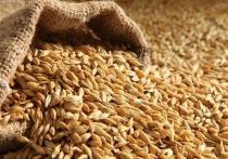 Зерно из Башкирии на ближний Восток отправляют сухогрузами «река-море»