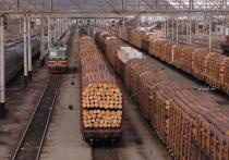 Контрабанду древесины из Приангарья в Иркутск на 16,8 млн выявила таможня