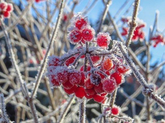 Заморозки до -5 градусов со снегом идут в Кузбасс