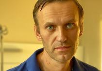 C тех пор, как  Алексей  Навальный был отравлен, возникло множество   различных теорий и версий о том, что произошло на самом деле