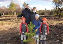 Министр МВД Хакасии высадил вместе с коллегами около ста деревьев в Абакане
