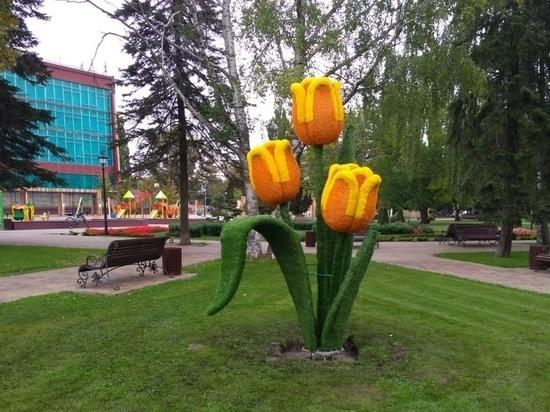 Новые арт-объекты установили в Ставрополе на День города