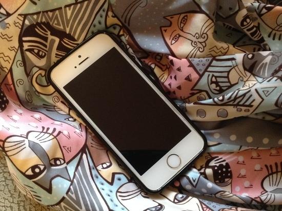 За найденный в примерочной телефон смолянка может получить срок