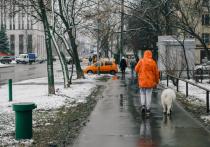 Гидрометцентр РФ представил вероятностный прогноз на предстоящую зиму в виде карты с обозначением температурных режимов