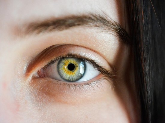 Что делать при ушибах, укусах, ранах глаз: чек-лист по экстренным мерам