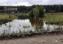 Эксперты ожидают повышения уровня воды в Уде и Бирюсе