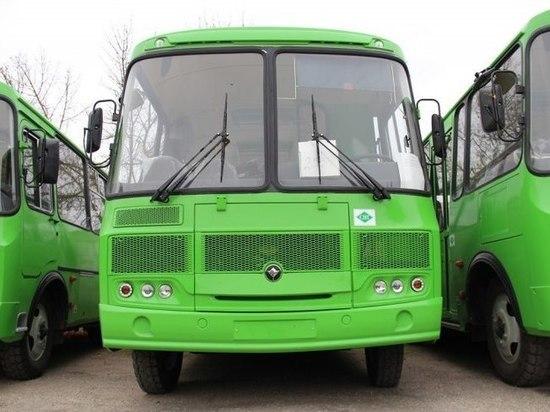 Псковичам объяснили зеленый цвет новых автобусов