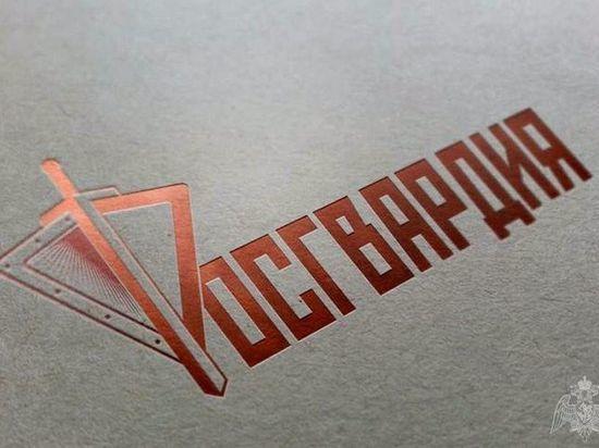 В Брянске росгвардейцы задержали совершивших кражу из сетевых магазинов