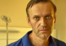 Песков назвал цель визита Меркель к Навальному