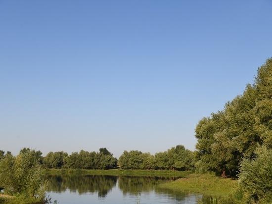 Стартовала экореабилитация 6 ериков и озер Волго-Ахтубинской поймы