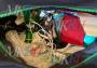 Мы обсудили на условиях анонимности с действующим экспертом-криминалистом службы ЭКЦ одного из округов Москвы результаты химико-токсикологических исследований мочи и крови погибшей Софии Конкиной