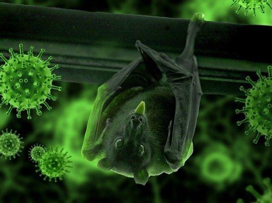 Ученые рассказали о причинах смертельных осложнений от коронавируса