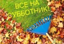 В рамках осеннего месячника по благоустройству в городском округе Серпухов пройдут два субботника.