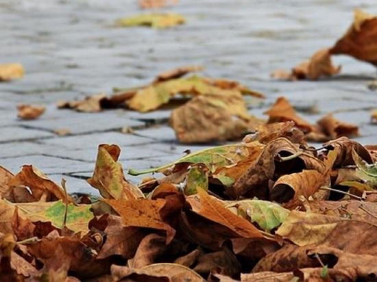 МЧС объявило в Волгоградской области экстренное предупреждение