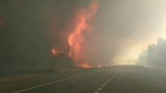 В Воронежской области из-за лесных пожаров объявили режим ЧС
