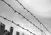 Уроженец Твери и экс-промоутер Емельяненко осужден за торговлю наркотиками