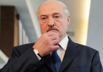Белорусы направили в Международный уголовный суд в Гааге обращение с просьбой возбудить уголовное дело против президента Белоруссии Александра Лукашенко