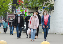 Со второй волной коронавируса перед властями многих стран встал вопрос: вводить ли жесткий карантин или сделать выбор в пользу поддержки экономики на плаву, ограничившись менее строгими мерами